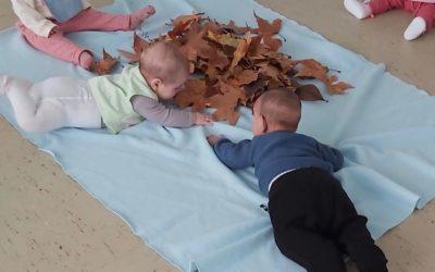 Protegido: Primera semana de noviembre. Clase de bebés de Irene